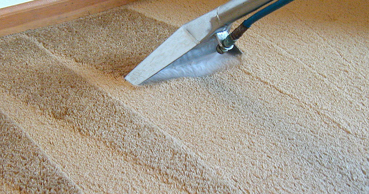 why have carpets professionally cleaned feat